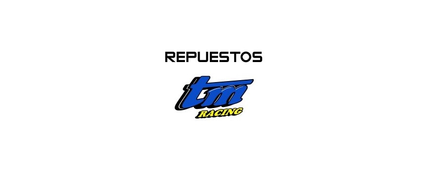 REPUESTOS TM